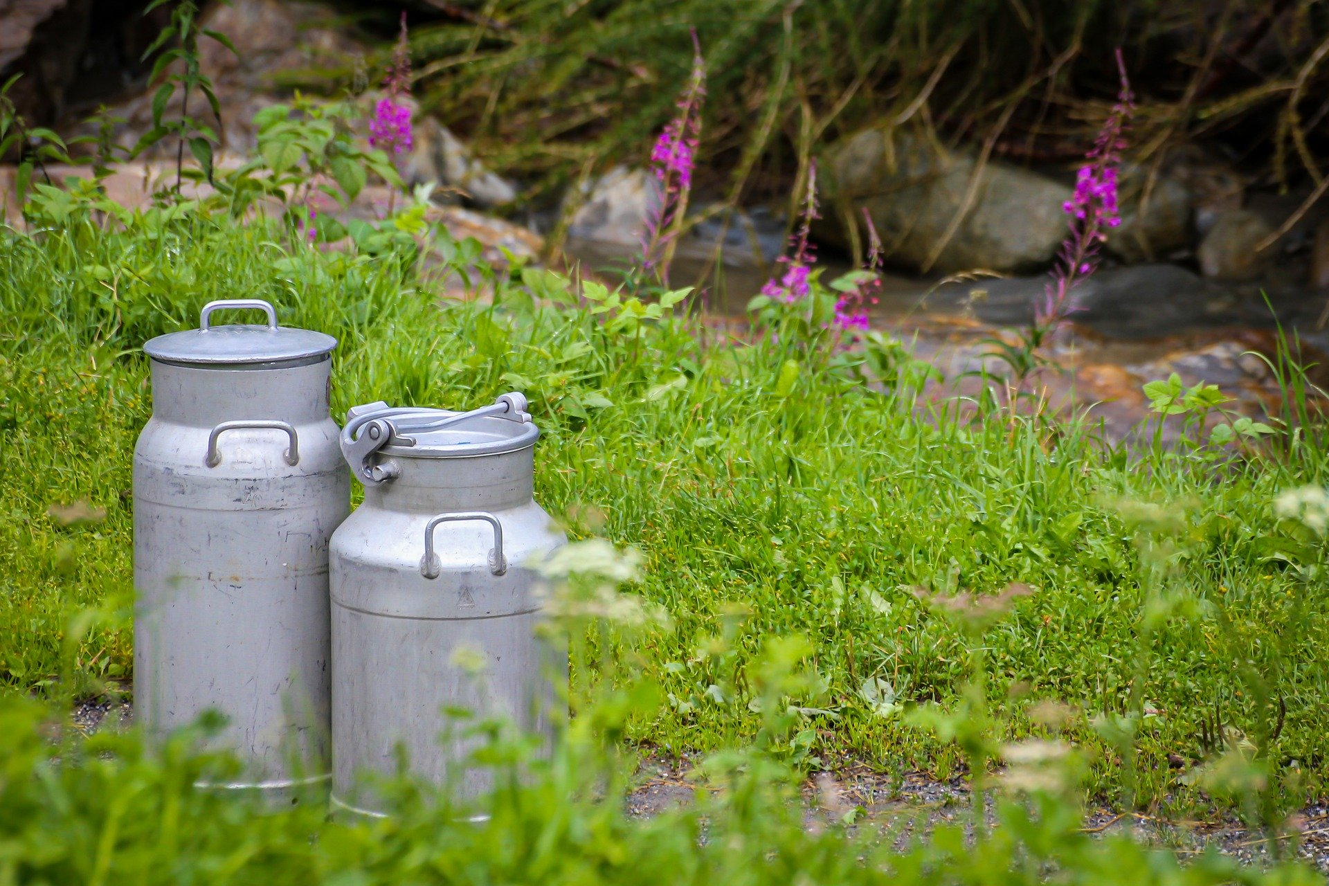 milk-cans-4585830_1920